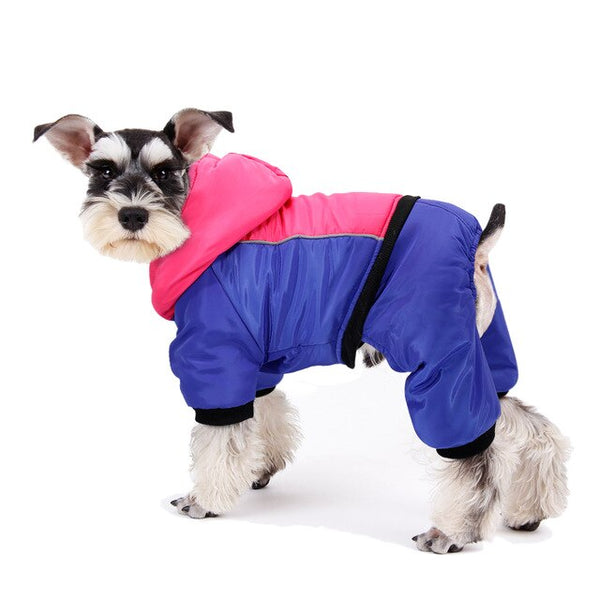 Stay Warm All The Way Waterproof Jacket