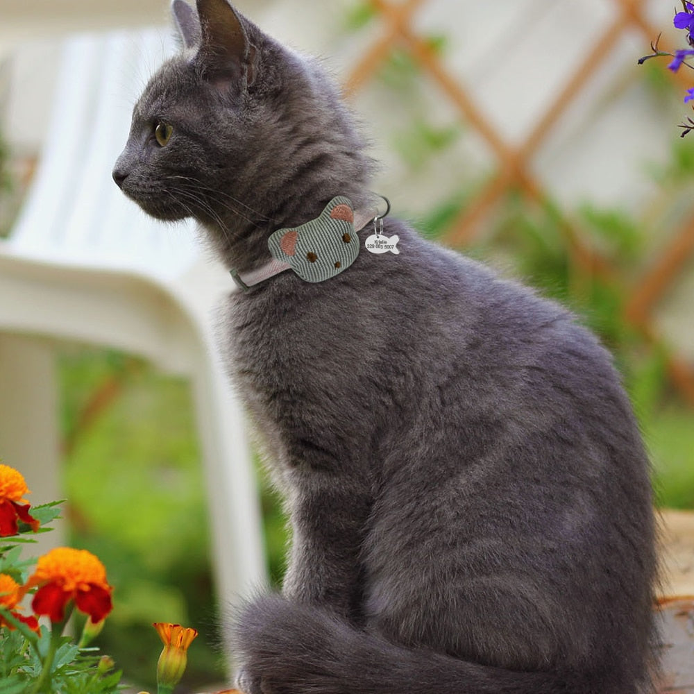 Personalized Cat Collar With Tag
