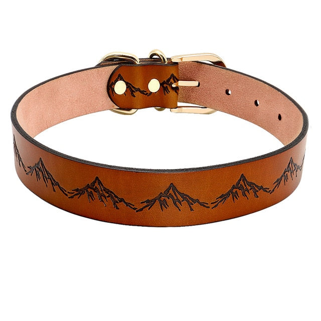 Look Cool On Me Leather Dog Collar