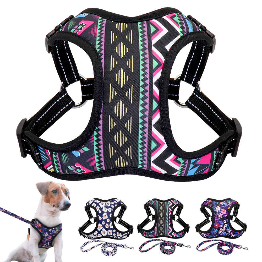 Star Is Me Forever Harness and Leash Set