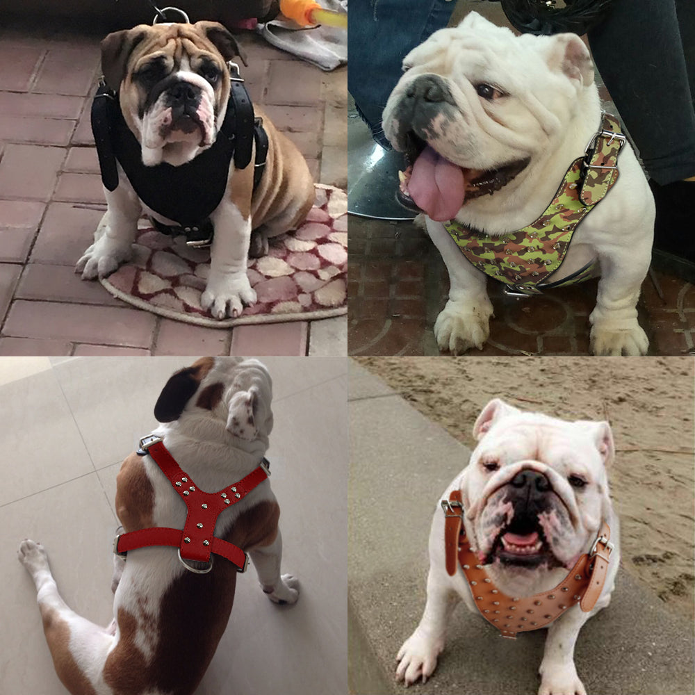 Dog Harness Pu Leather Chest Adjustable