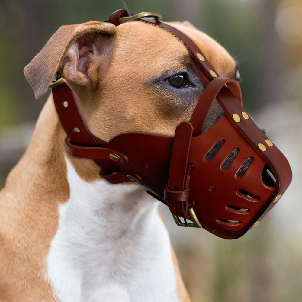 Ninja Version Two Leather Muzzles