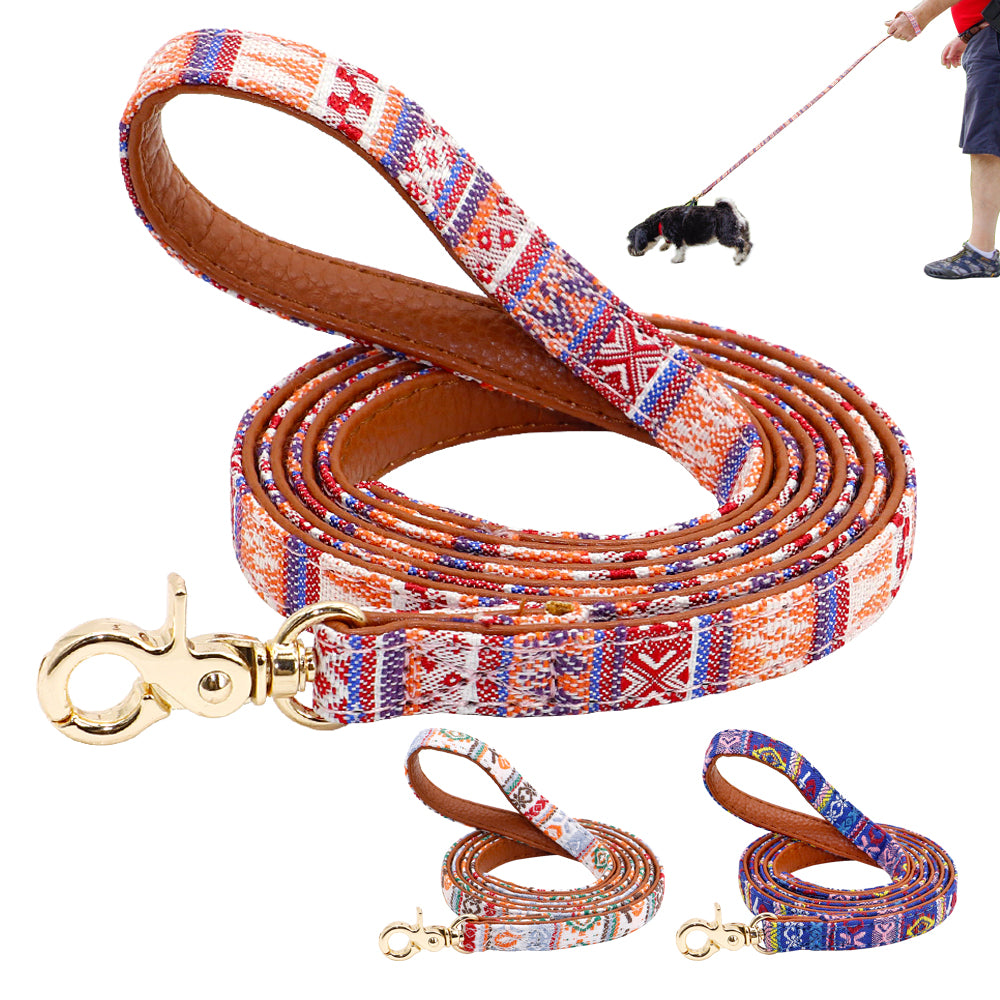 Colorful Native Leather Leash