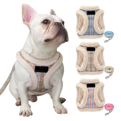 The Northerners Dog Harness & Leash Set