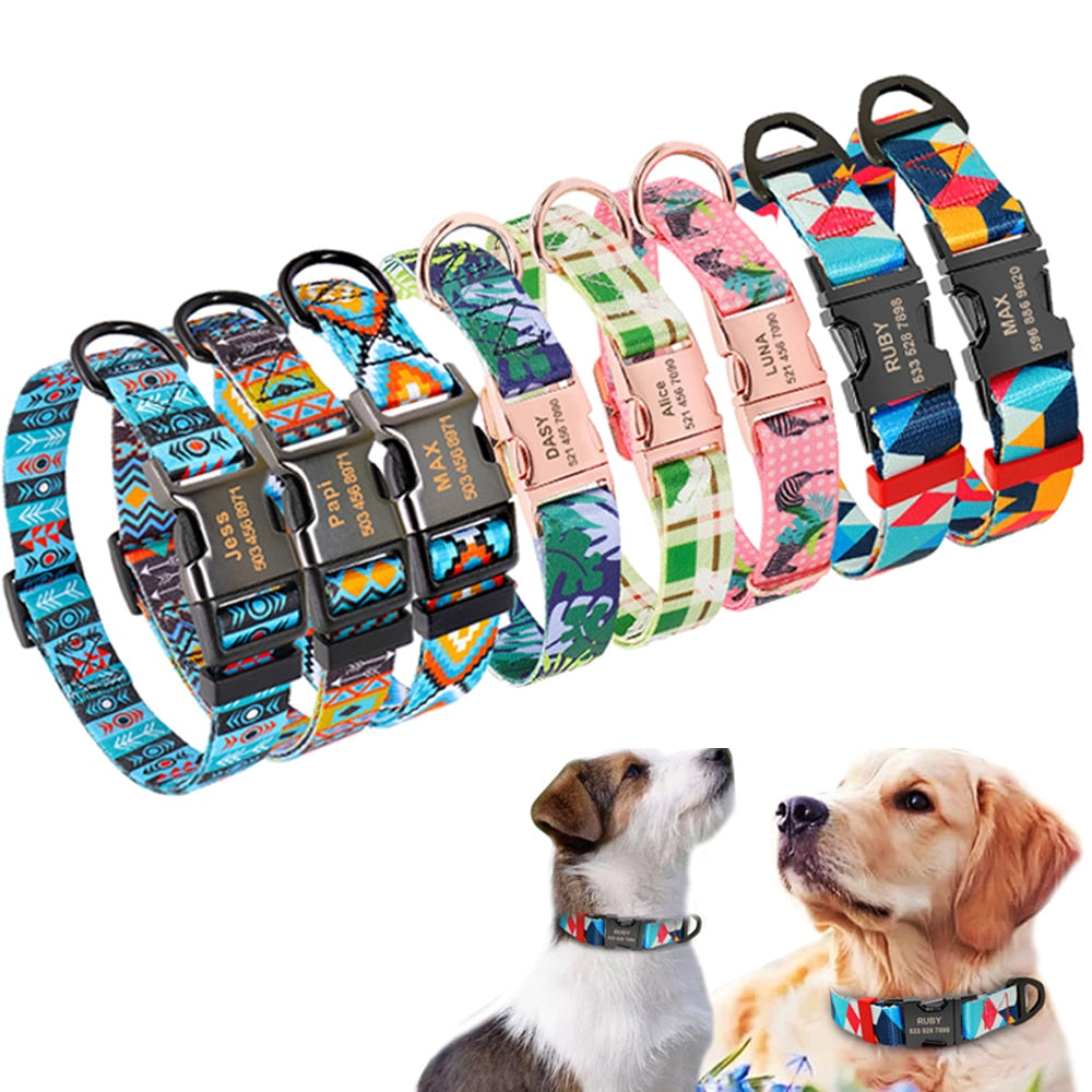 Easy Choice Nylon Collar