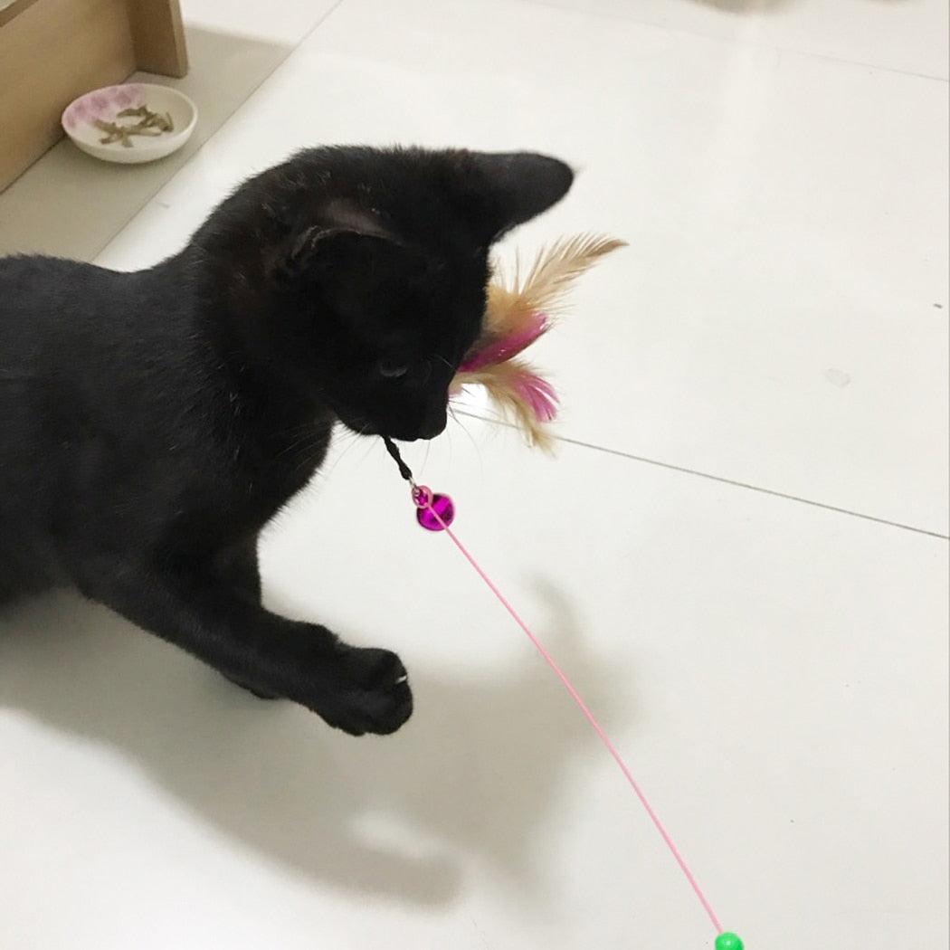 Cat Interactive Toy