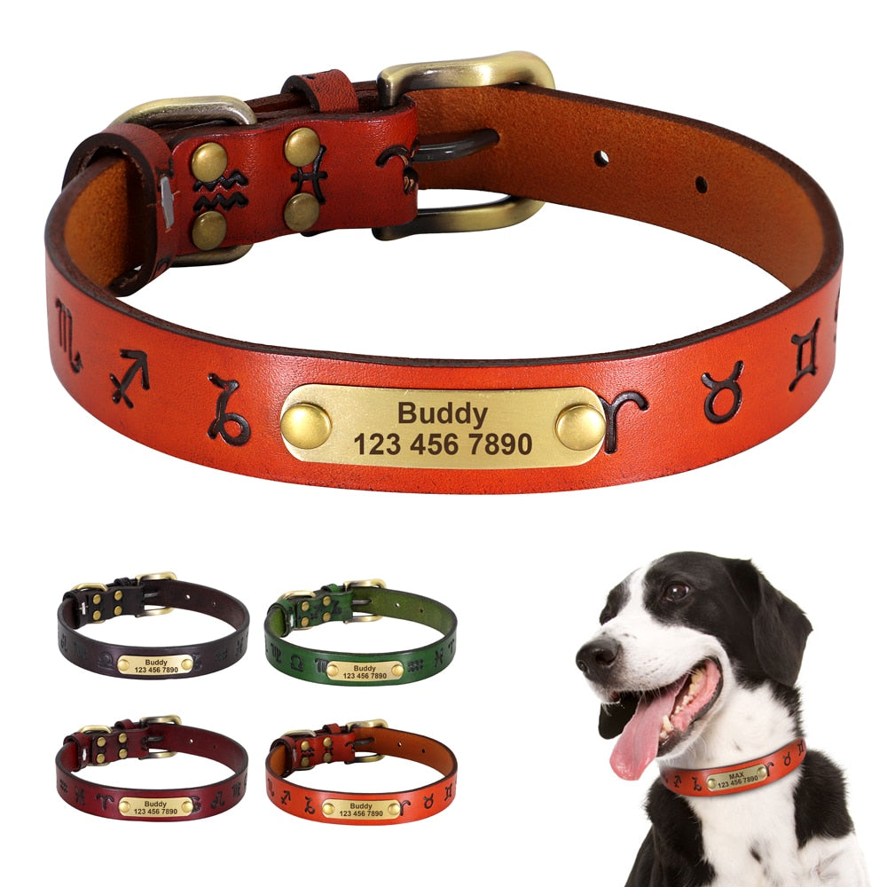 Ancient Style Dog Personalized Collar