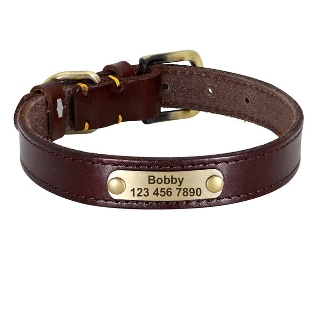 Loyal Leather Collar
