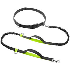 Love To Run With You Nylon Hands Free Bungee Leash