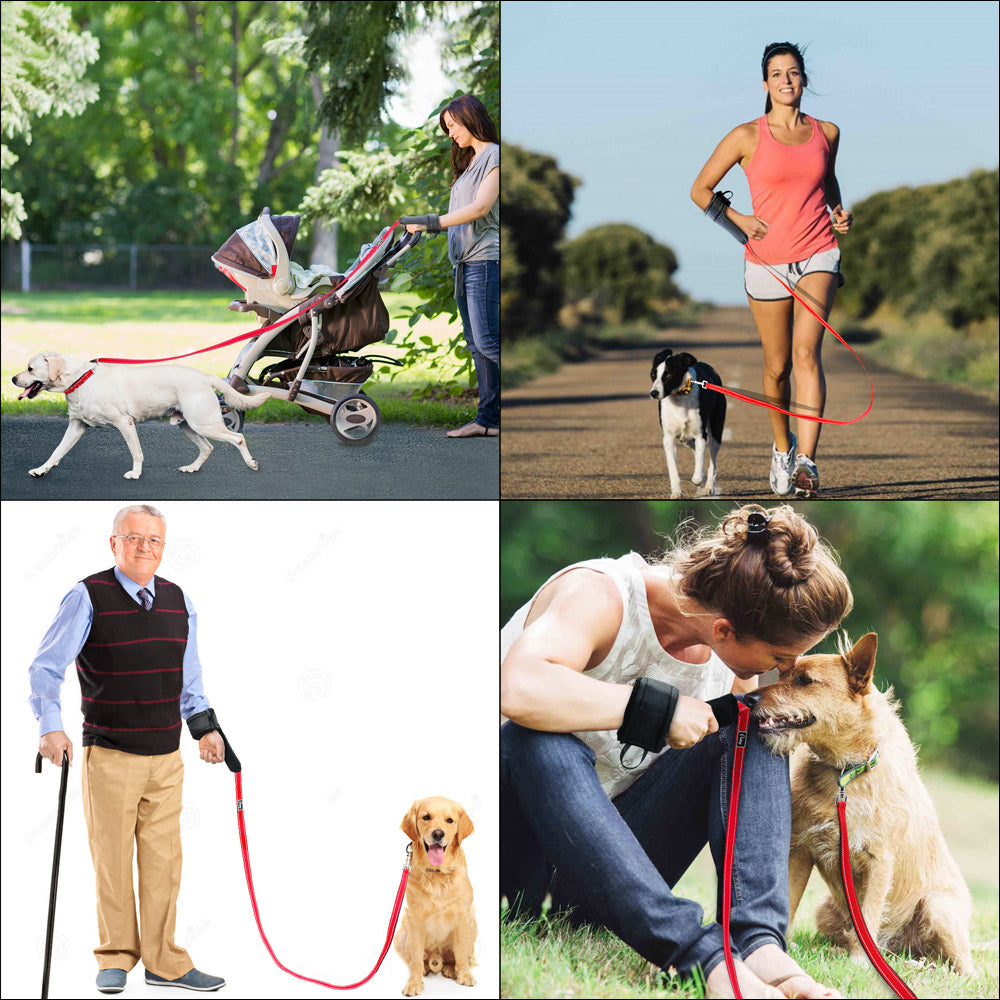 Who Walks Who Hands Free Nylon Dog Leash