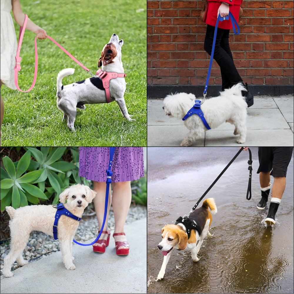 For She or For Him Dog Harness and Leash Set