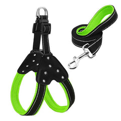 Reflective Mesh Dog Harness and Leash Set