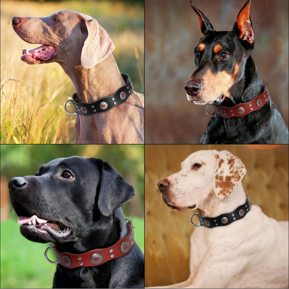 Only Me Can Wear This Durable Genuine Leather Collar