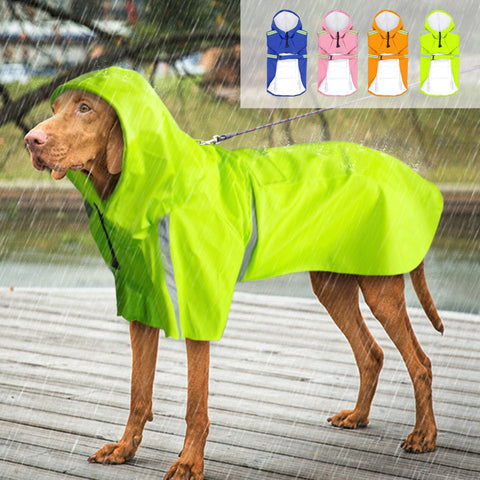 Rain Isn't Scary Reflective Dog Raincoat