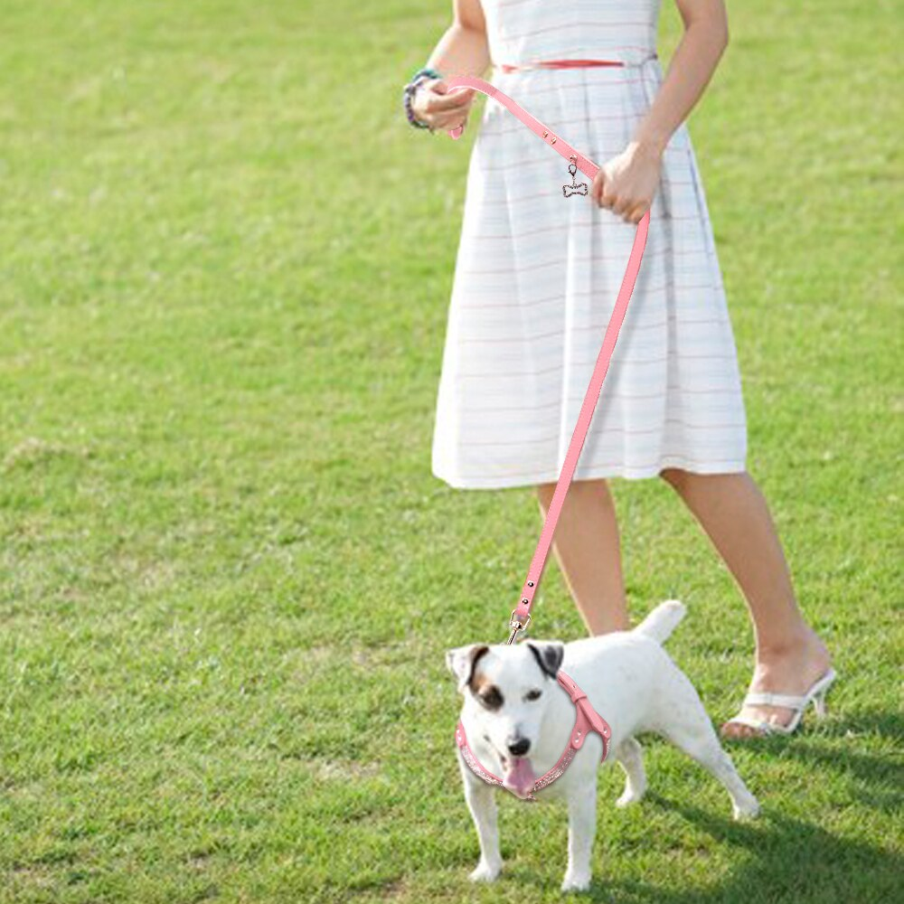 Family's Best Friend Dog Harness Leash Set