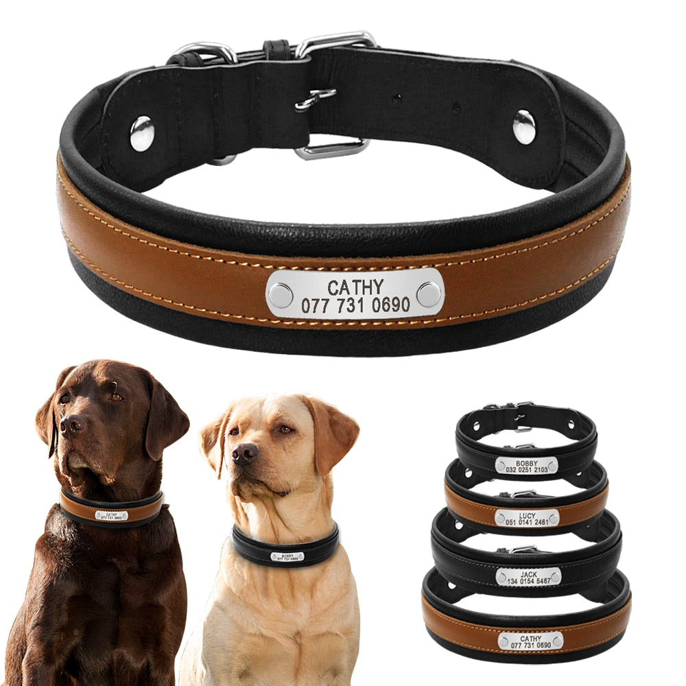 Brotherhood Named Personalized Tag Collar