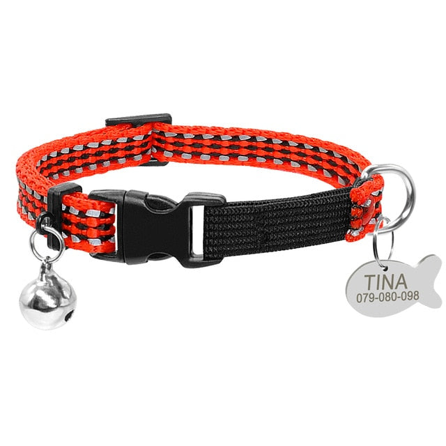 Best of Both World Reflective Collar + Tag + Bell