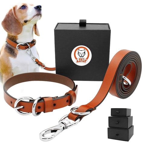 Real Leather Dog Collar and Leash Set