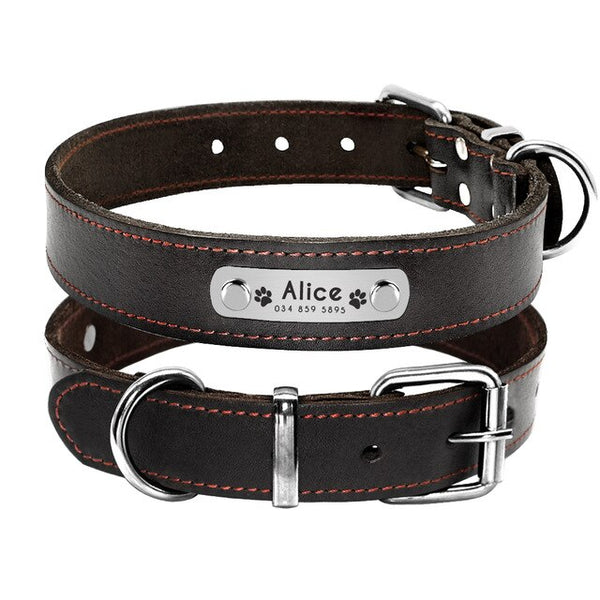 Customized Collar Personalized ID