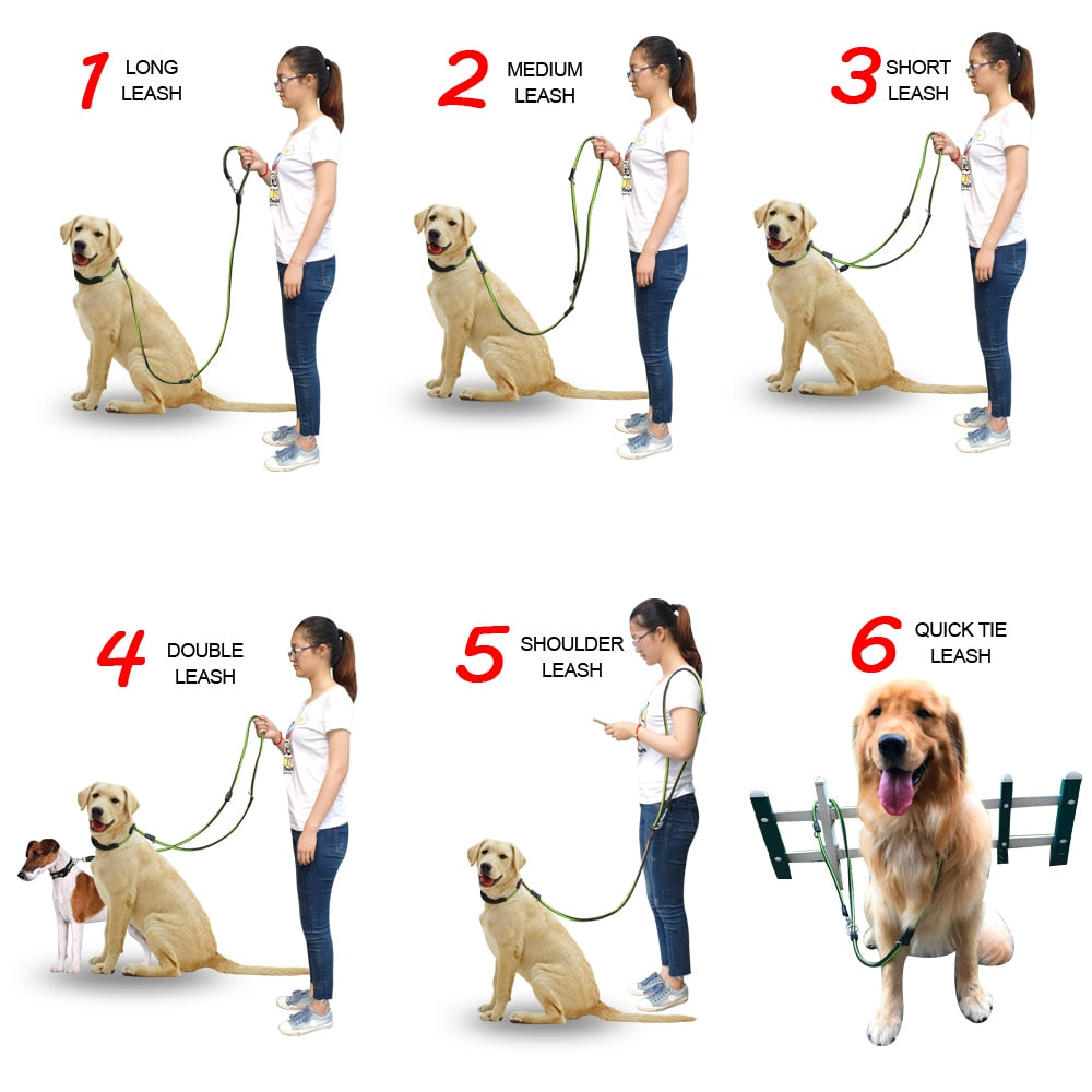 Easy On Non-slip Dogs Leads