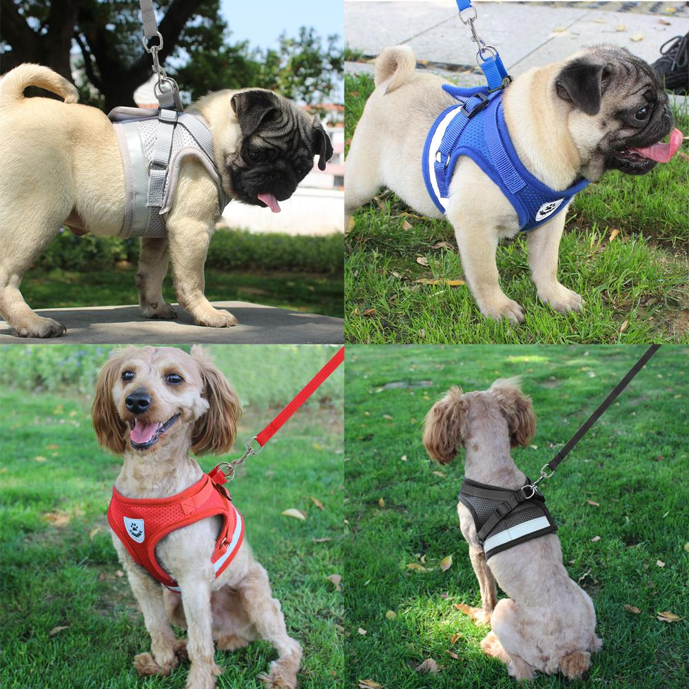 Easy Reflective Harness and Leash Set