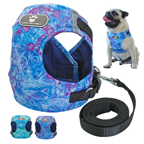 Chihuahua Reflective Harness Vest and Leash Set