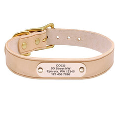 Personalized Velvet Leather Collar