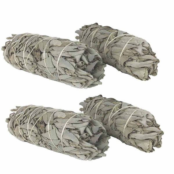 "Californian White Sage 100%  Sun Dried 4"" Smudge Sticks"