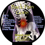Back Pain Gone-Download- by Wendi Friesen