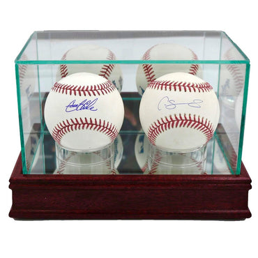 Gerrit Cole and Gary Sanchez New York Yankees 2-Ball Set with Case