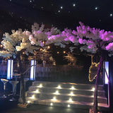 big white blossom trees for events hire @elloirevents
