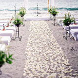 beach petal walkways for weddings @elloirevents