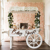 gorgeous baby shower candy cart for events hire @elloirevents