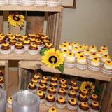 themed decorated cupcakes for birthdays, parties, baby showers etc @elloirevents