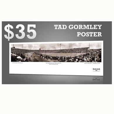 Glory Days - Tad Gormley Stadium Poster