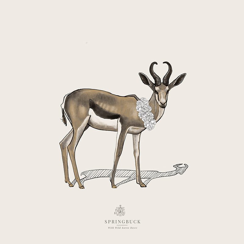 Springbuck | Wildlife Tribute Collection