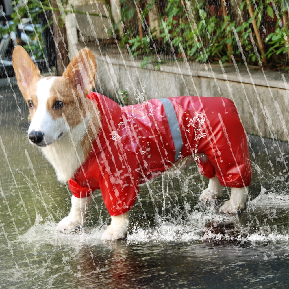 Dog and Cat Rain Coat