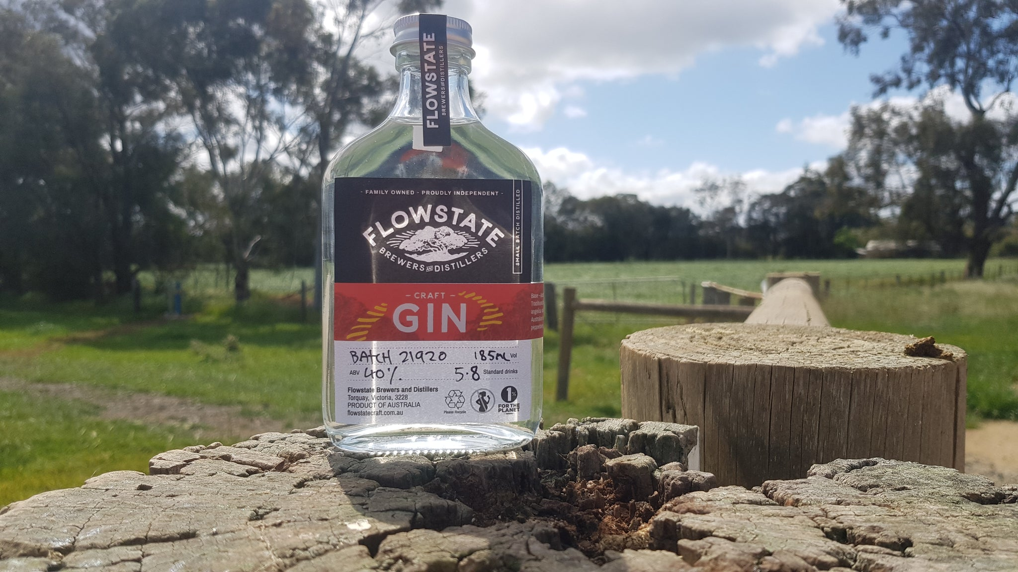 Craft Gin