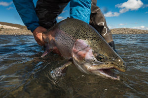 Top 100 places to fly fish - Jurassic Lake Patagonia