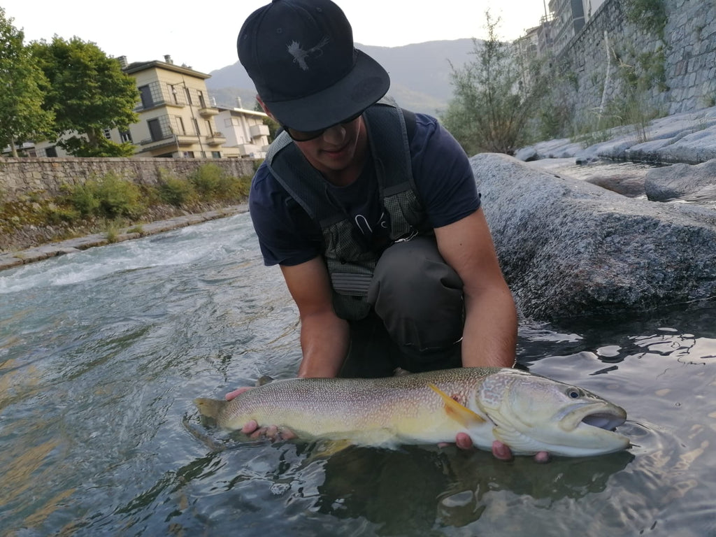 Lake Como Fishing: Private water - Marble Trout - Whieldon Fly Fishing
