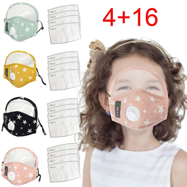Face Mask Filtered Shield