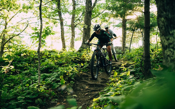 Two riders on mountain bikes riding on a trail in a forest