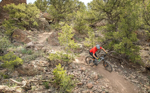 Mountain bike rider going downhill on a winding dirt trail.