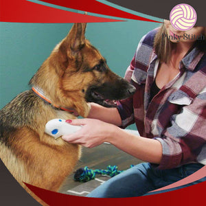 Electric Flea & Tick Remover Comb