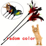 Funny Feather Spring Kitten Cat Toy Feather Rod Teaser Bell Bead Play Pet Wand Teasing with Colored Beads freeshipping