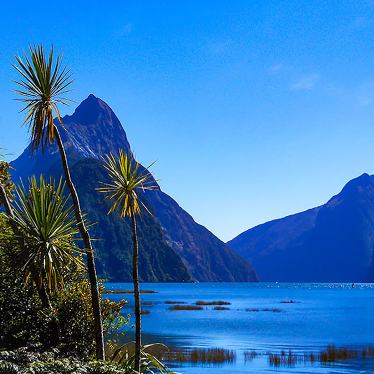 Where to Visit in New Zealand