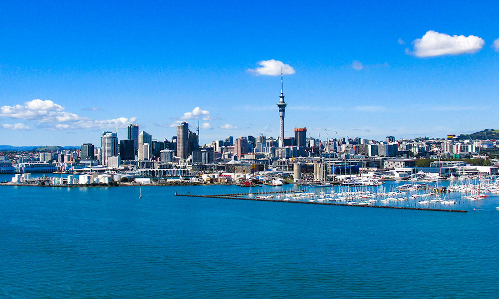 Auckland | Where to Visit in New Zealand | Flashpacker Blog