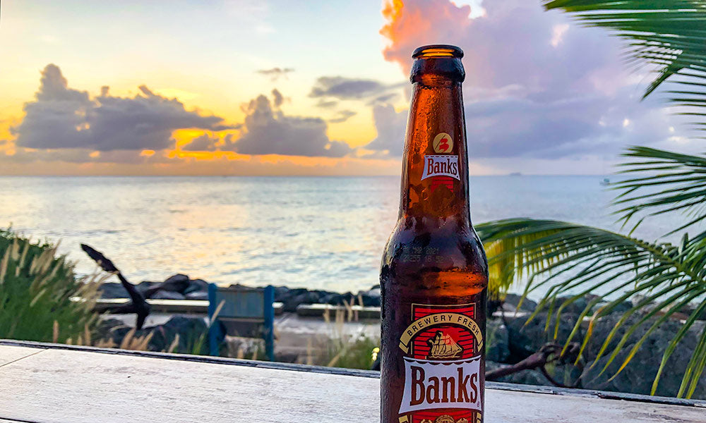 Barbados Travel Guide | Flashpacker Co