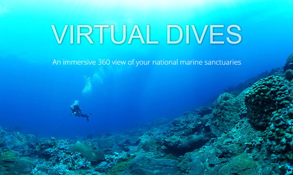 NOAA Virtual Dives | Ways to Explore the World in Quarantine | Flashpacker Chronicles