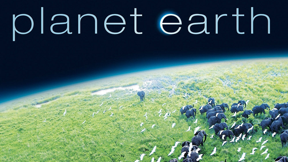 Planet Earth-Amazon Prime Video | Flashpacker Chronicles